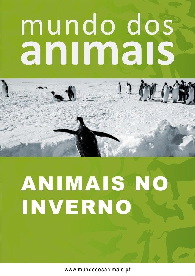 ANIMAIS NO INVERNO www.mundodosanimais.pt