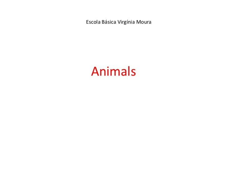 Animals<br />Escola Básica Virgínia Moura<br />