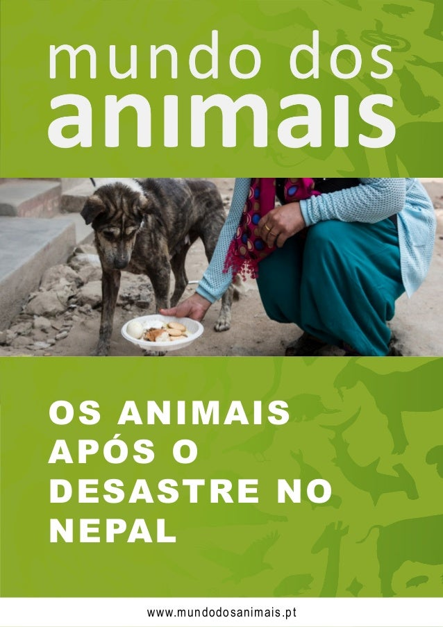 OS ANIMAIS APÓS O DESASTRE NO NEPAL www.mundodosanimais.pt