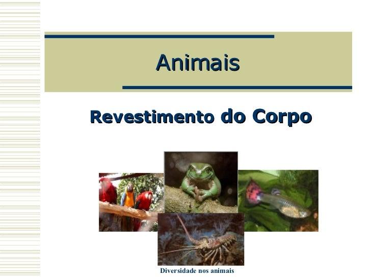 Animais Revestimento   do Corpo