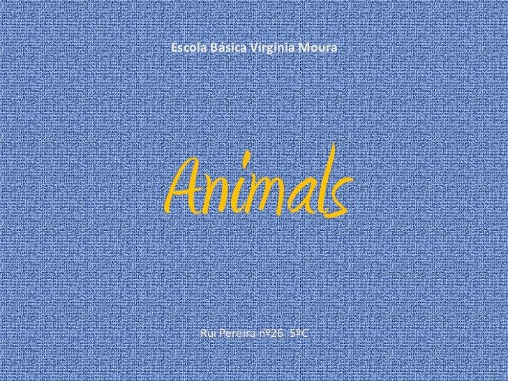 Escola Básica Virgínia Moura<br />Animals<br />Rui Pereira nº26  5ºC<br />