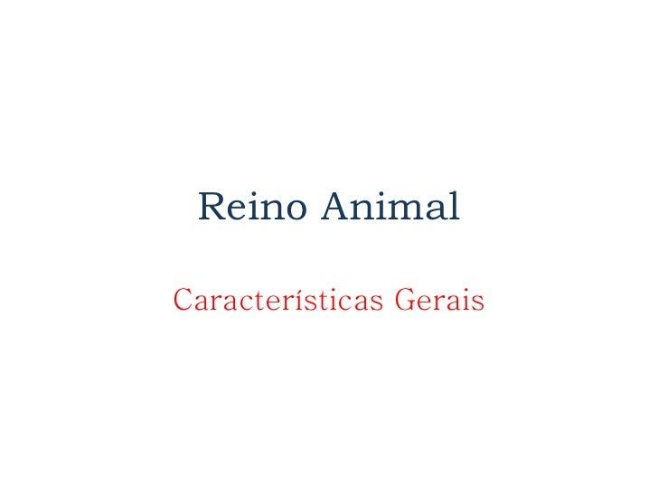 Reino Animal Características Gerais