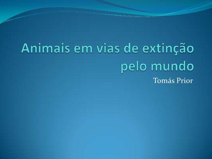 Animais em vias de extinçãopelo mundo<br />Tomás Prior<br />