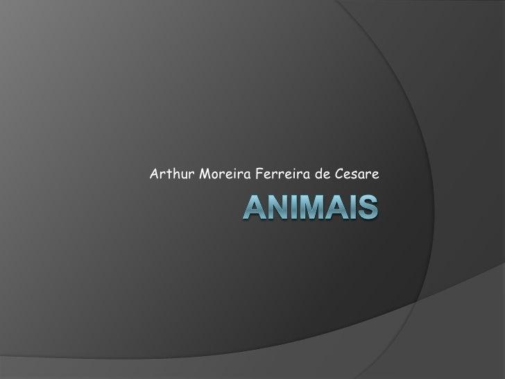 Animais<br />Arthur Moreira Ferreira de Cesare<br />