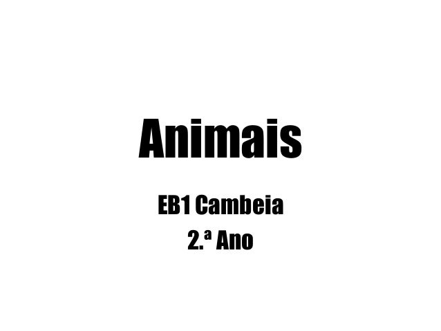 Animais EB1 Cambeia 2.ª Ano
