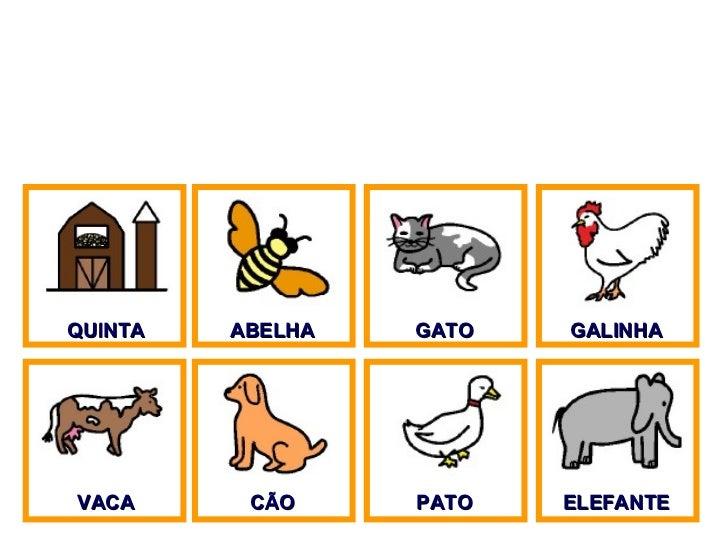 QUINTA ABELHA GATO GALINHA VACA CÃO PATO ELEFANTE