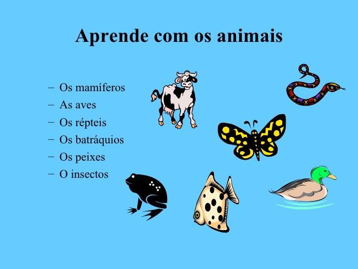 Aprende com os animais <ul><ul><li>Os mamíferos </li></ul></ul><ul><ul><li>As aves </li></ul></ul><ul><ul><li>Os répteis <...