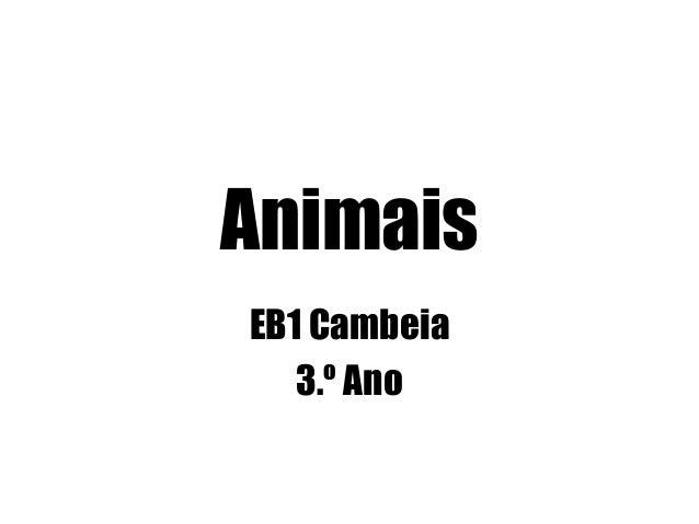 Animais EB1 Cambeia 3.º Ano