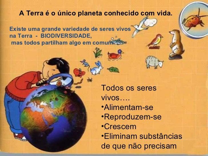 Existe uma grande variedade de seres vivos  na Terra  -  BIODIVERSIDADE, mas todos partilham algo em comum. A Terra é o ún...
