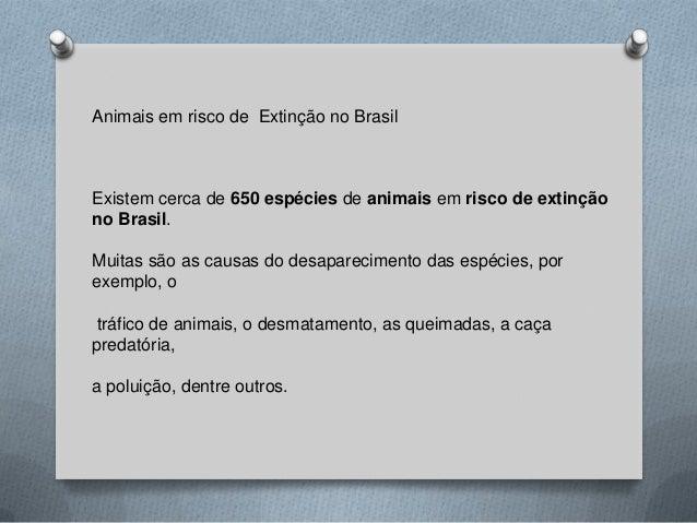Animais em risco de Extinção no Brasil Existem cerca de 650 espécies de animais em risco de extinção no Brasil. Muitas são...