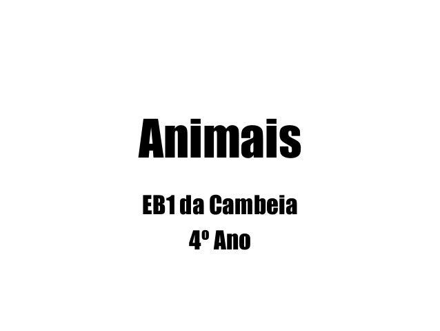 Animais EB1 da Cambeia 4º Ano