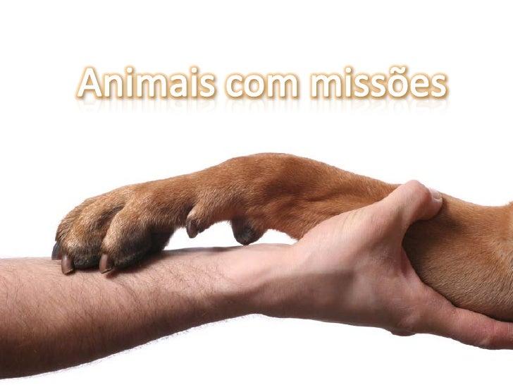 Terapia assistida por cães      Objectivos:     Trabalhar a hiperactividade, auto-     estima, comunicação, memória,     l...