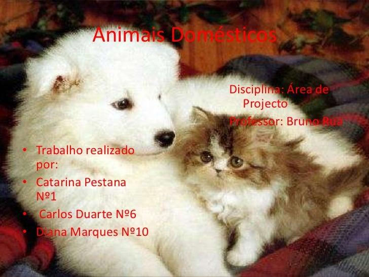 Animais Domésticos<br />Disciplina: Área de  Projecto<br />Professor: Bruno Rua<br />Trabalho realizado por:<br />Catarina...