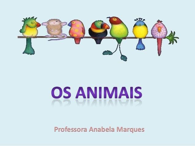 Professora Anabela Marques