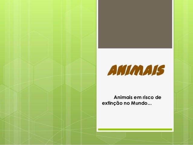 Animais Animais em risco de extinção no Mundo...