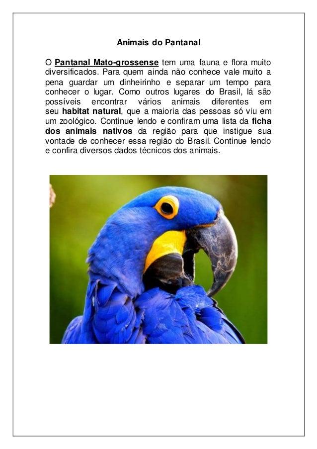 Animais do Pantanal O Pantanal Mato-grossense tem uma fauna e flora muito diversificados. Para quem ainda não conhece vale...