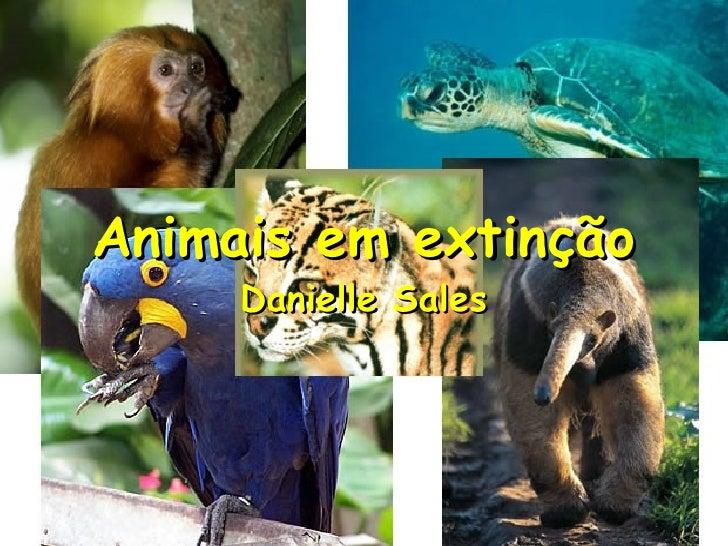 Animais em extinção Danielle Sales