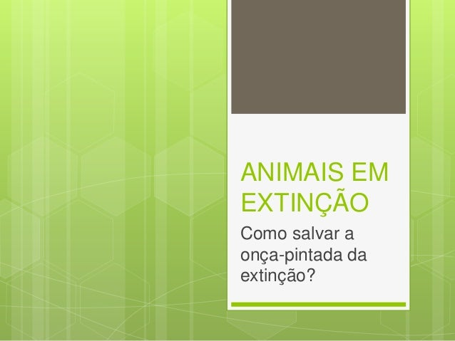ANIMAIS EM EXTINÇÃO Como salvar a onça-pintada da extinção?