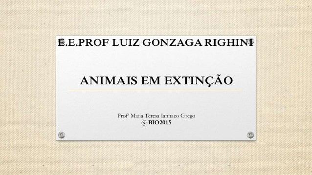 E.E.PROF LUIZ GONZAGA RIGHINI ANIMAIS EM EXTINÇÃO Profª Maria Teresa Iannaco Grego @ BIO2015