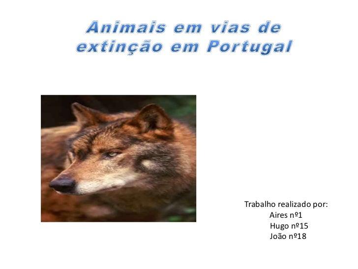 Trabalho realizado por:       Aires nº1       Hugo nº15       João nº18