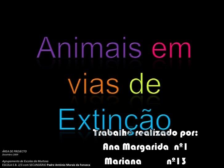 Animaisemvias deExtinção<br />Trabalho realizado por:<br />Ana Margarida  nº1 <br />Mariana          nº13 <br />ÁREA DE PR...