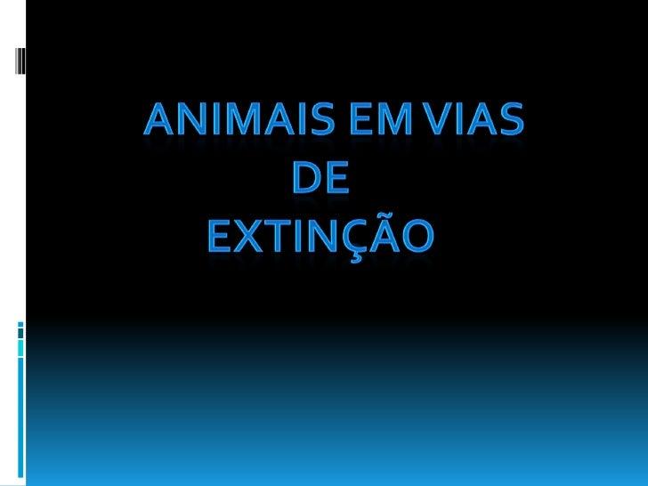  Aluna:                    Professores:  Ana Filipa Rodrigues      Ana Cristina Ferreira   Oliveira                  ...