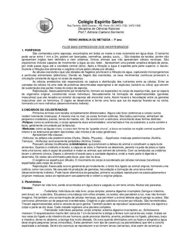 Colégio Espírito Santo Rua Tamoio, 3393-Canoas – RS. Fone: (51) 3472-1722 / 3472-1502  Disciplina de Ciências Naturais Pro...