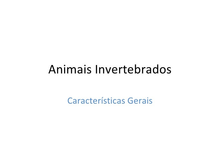 Animais Invertebrados Características Gerais