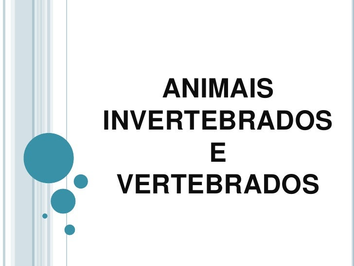 ANIMAIS INVERTEBRADOSEVERTEBRADOS<br />