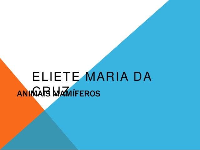 ELIETE MARIA DA  CRUZ  ANIMAIS MAMÍFEROS