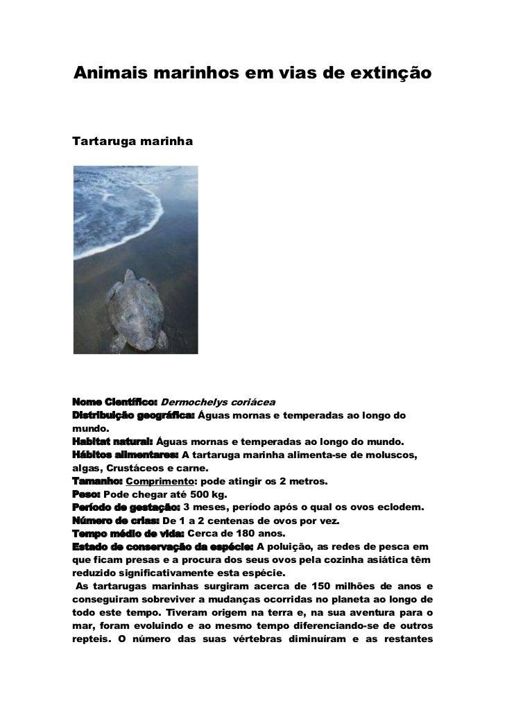 Animais marinhos em vias de extinção<br />Tartaruga marinha<br /><br />Nome Científico: Dermochelys coriácea Distribuição...
