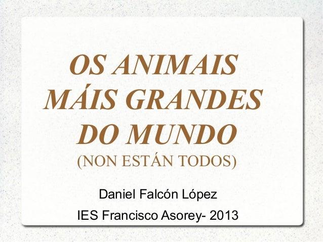 OS ANIMAISMÁIS GRANDES DO MUNDO (NON ESTÁN TODOS)    Daniel Falcón López IES Francisco Asorey- 2013