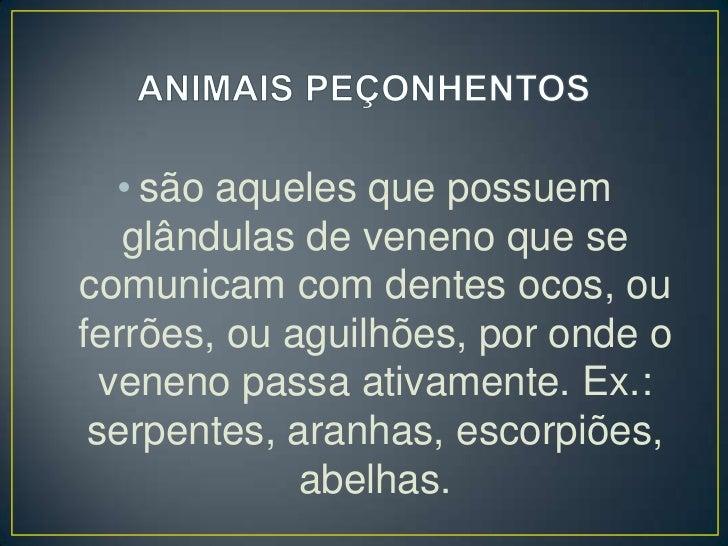 ANIMAIS PEÇONHENTOS<br />são aqueles que possuem glândulas de veneno que se comunicam com dentes ocos, ou ferrões, ou agui...