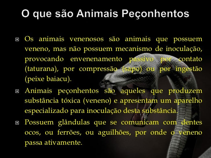 Animais peçonhentos ofidismo Slide 2