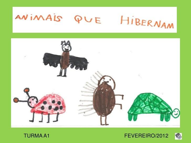 TURMA A1   FEVEREIRO/2012