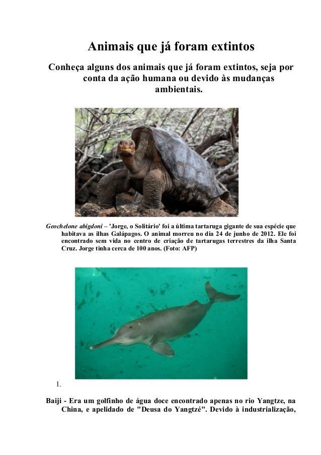 Animais que já foram extintos Conheça alguns dos animais que já foram extintos, seja por conta da ação humana ou devido às...