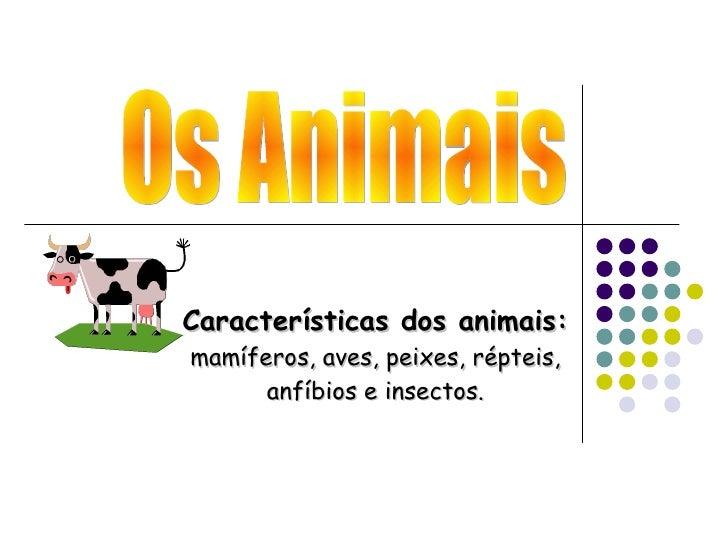 Os Animais Características dos animais:  mamíferos, aves, peixes, répteis, anfíbios e insectos.