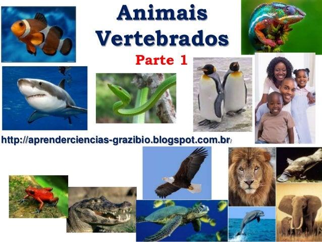 ANIMAIS VERTEBRADOS PDF DOWNLOAD