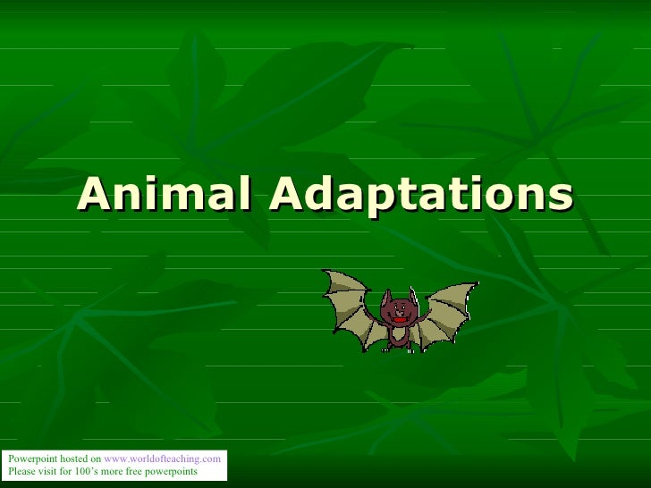 Animal Adaptations Powerpoint hosted on  www. worldofteaching .com Please visit for 100's more free powerpoints