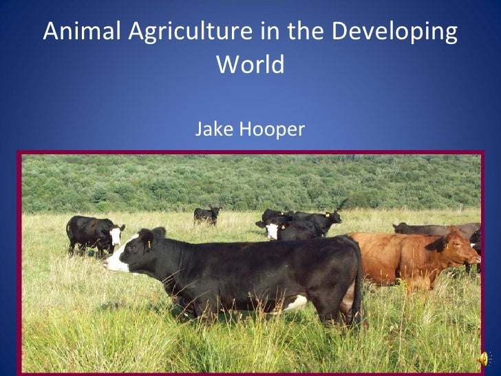 Animal Agriculture in the Developing World Jake Hooper