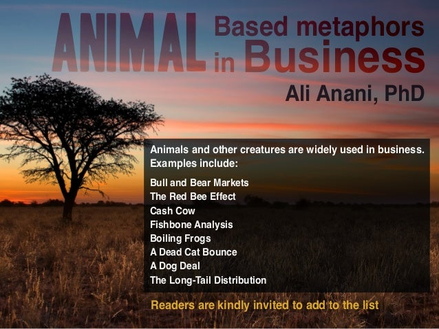 Animal Based Metaphors In Business