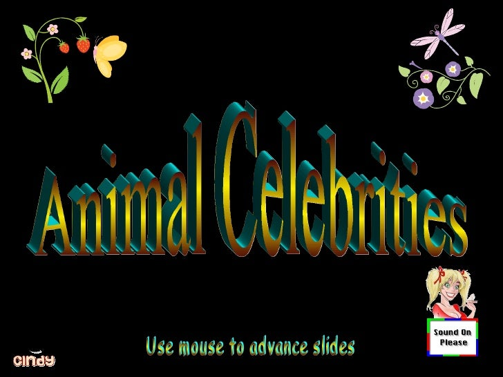 Animal Celebrities Use mouse to advance slides