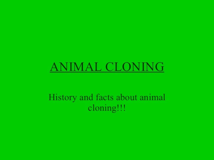 ANIMAL CLONING History and facts about animal cloning!!!