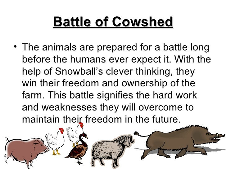 battle of the cowshed animal farm essay Propaganda within animal farm essays propaganda is used by people to falsify   that snowball had actually tried to sabotage the battle of cowshed, but failed.