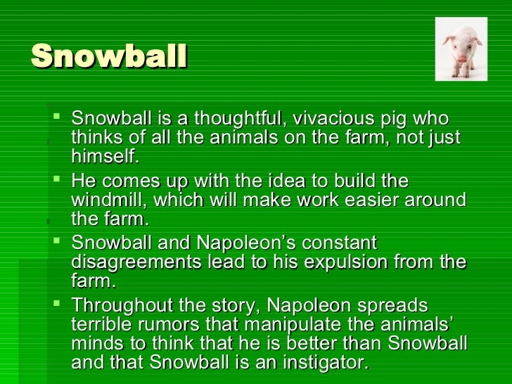 napoleon and snowball animal farm essay This is the first time the dogs eave been seen since napoleon took them in and proceeded to raise them as his secret police later on, after associating snowball.