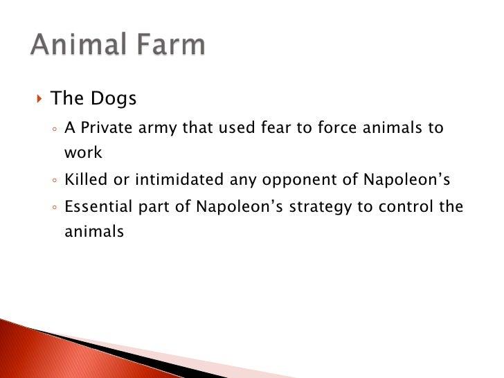 Animal Farm Dogs Kgb Www Picsbud Com