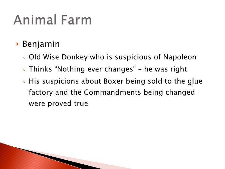 animal farm vs russian revolution essay research paper help animal farm vs russian revolution essay