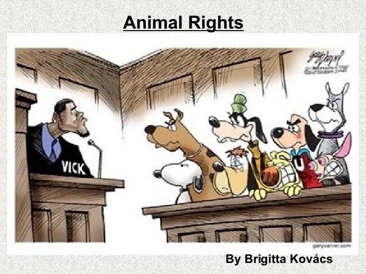 Animal Rights By Brigitta Kovács
