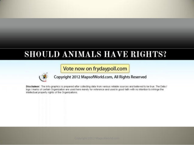 Should animals have the same rights as humans?
