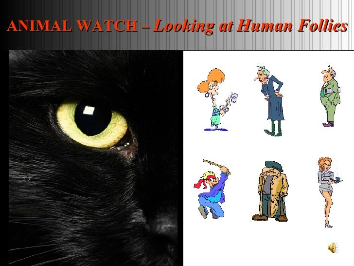 ANIMAL WATCH –  Looking at Human Follies